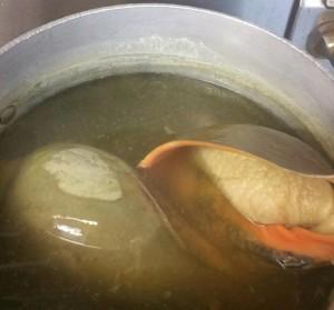 sea snails in boiling water