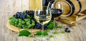 Buy Premium Wines