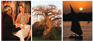 Scenic images of african wild
